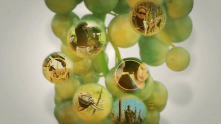 Fidéliser recruter en viticulture